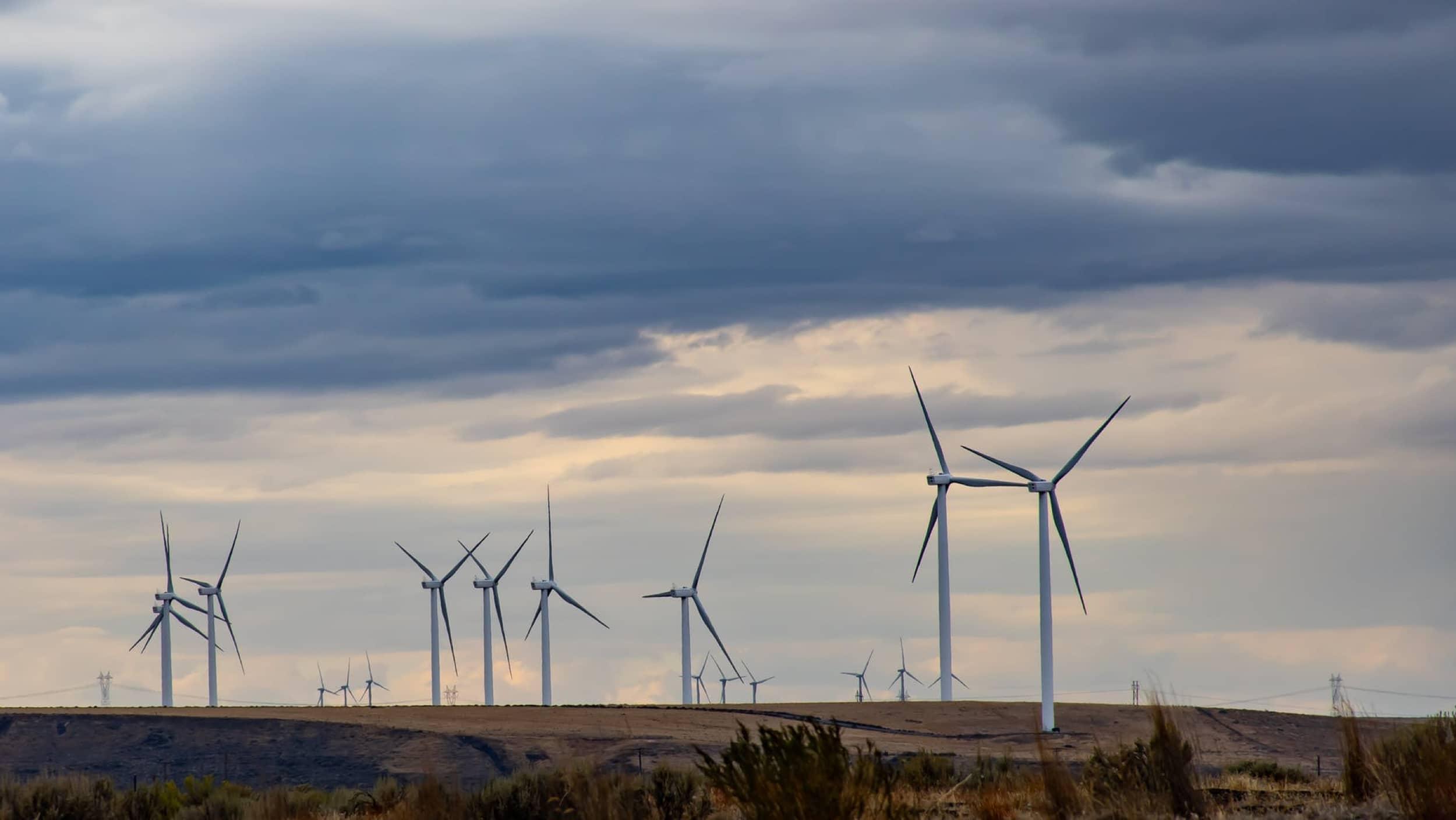 Photo for Environment Council of Rhode Island announces their 2020 legislative priorities