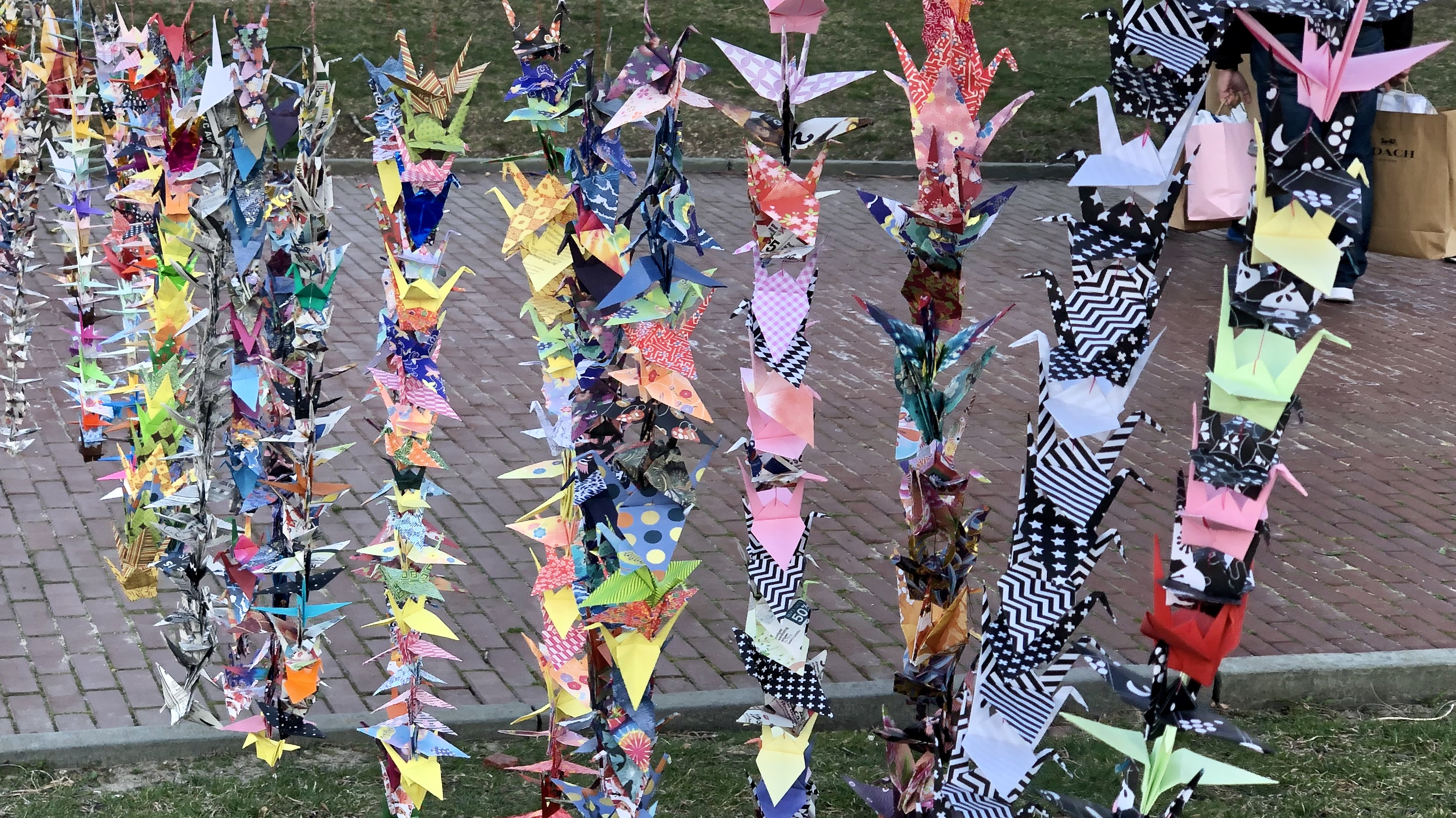 Photo for 1000 Paper Cranes Project: Asian Visibility rally and vigil at the State House