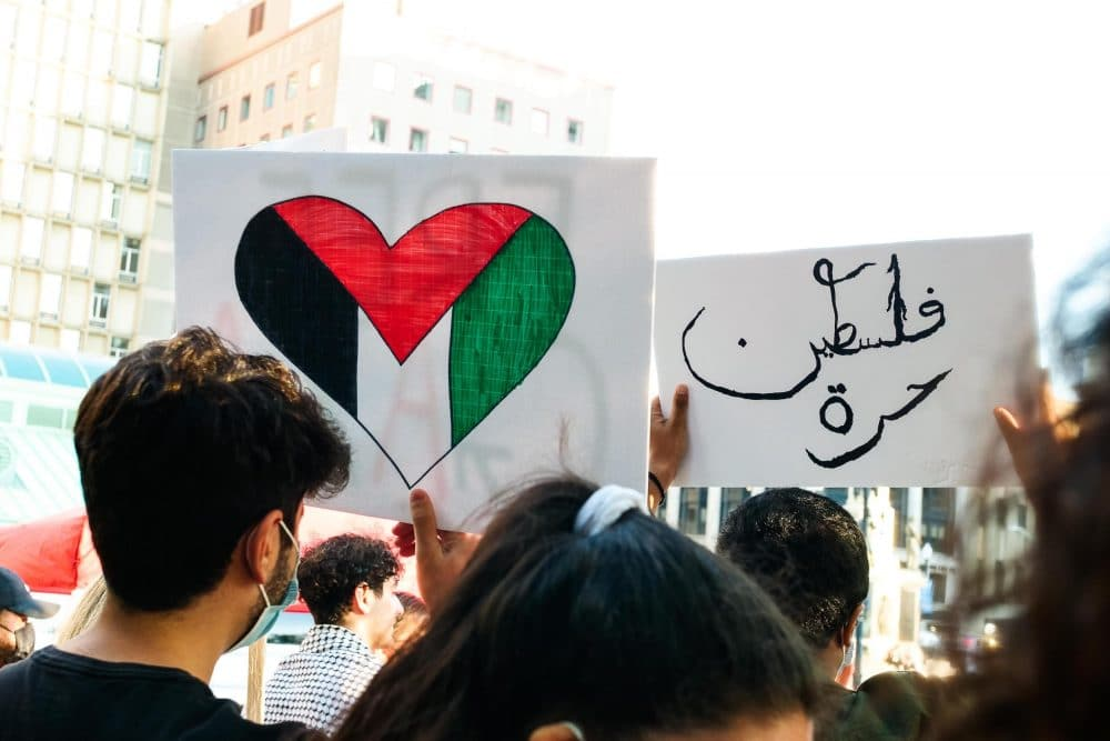 Selene Means: Photos from the Free Palestine rally in Providence